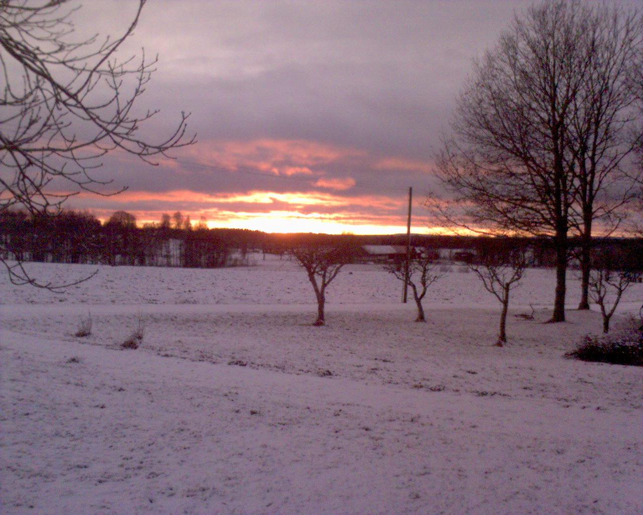 sun_in_winter